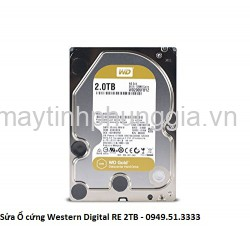 Sửa Ổ cứng Western Digital Datacenter RE 2TB
